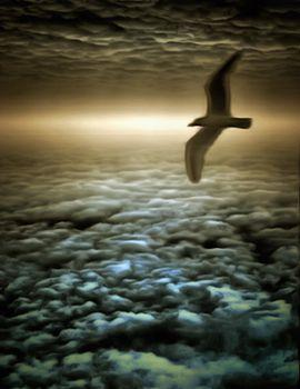 Thunderbird in cloudy sky.