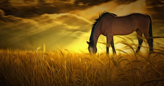 Oil painting. Horse on pasture in rays of sunset.