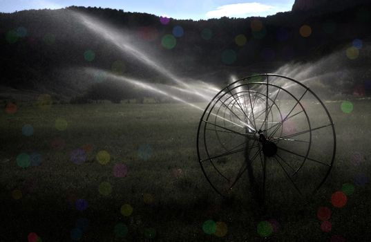 Irrigation system in green field