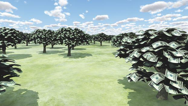 US Hundred Dollar Bill Trees
