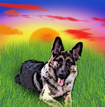 Illustration. German shepherd dog lying on green grass. Sunset