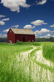 Red Barn in field of wheat