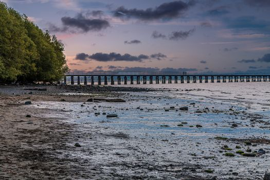 Late Afternoon Low Tide on Bellingham Bay by Abandoned Pier