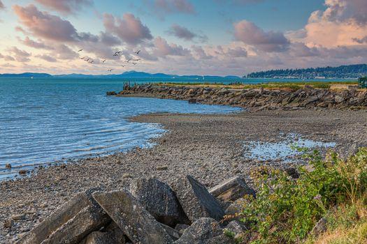 Rocky Shore on Bellingham Bay at Low Tide