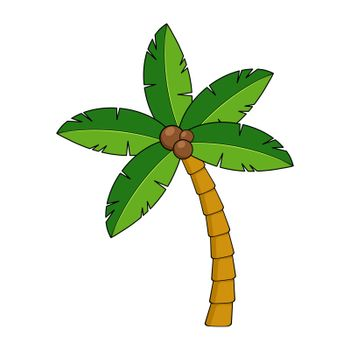 Coco palm cartoon isolated on white. Tropical palm tree clipart. Exotic coconut palmtree graphic for summertime poster or postcard. Shape of paradise vacation symbol. Vector cartoon illustration.