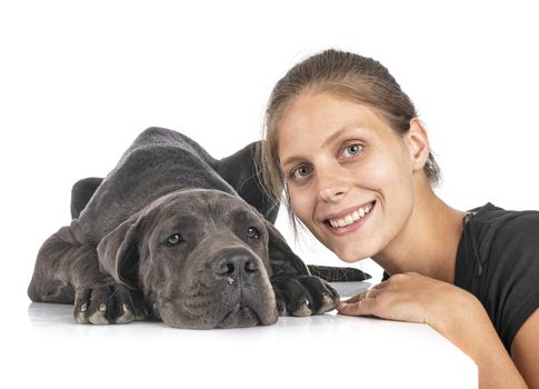 puppy great dane and woman in front of white background