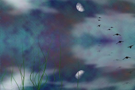 Mystic Marsh