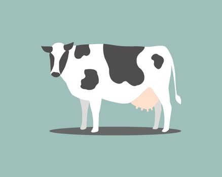 White cow with black stripes on a blue backdrop. Dairy cow for dairy. Cow with white stripes alternating with black.