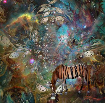 Vivid Imagination