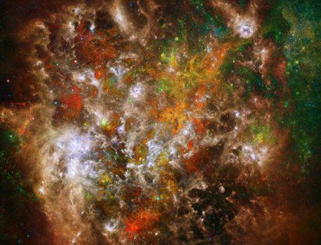 Vivid Universe