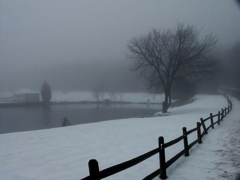 Winter lake. Fog and snow