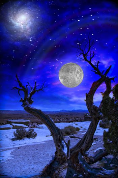 Desert Twilight