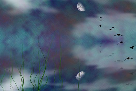 Mystic Marsh Landscape