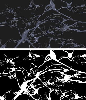 Nerve cells with alpha mask