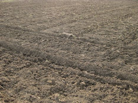 Disc harrow plow the garden. Private infield. Caring for the soil. Preparation for sowing.