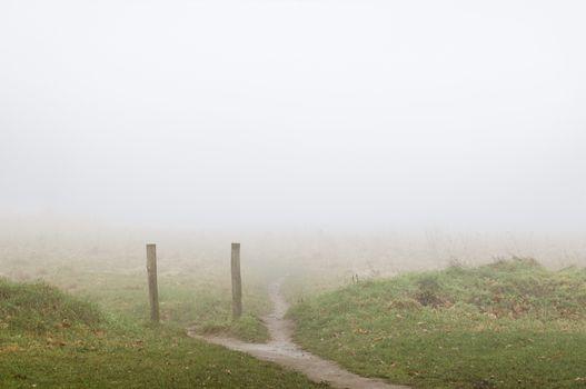 Footpath leading through foggy field