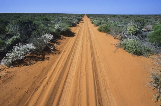 Australia tracks through desert