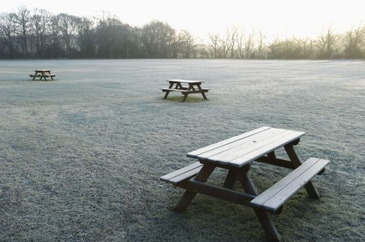 Benches on empty field