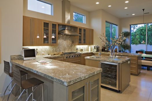 Contemporary kitchen in luxury mansion