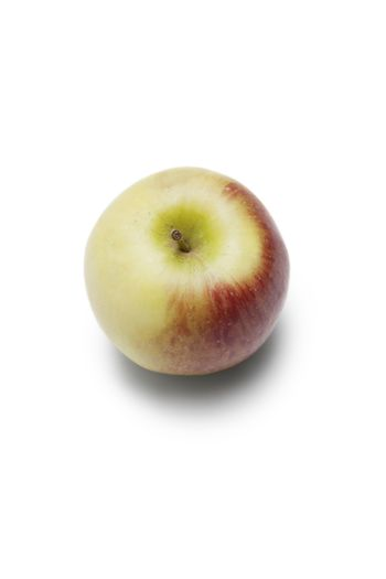 High angle view of apple against white background