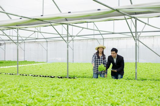 Farmer is suggesting  how to take care of vegetables in the beautiful Hydroponics.