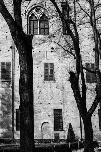 Whimsical shade of trees in the courtyard of the Duke of Gonzaga's palace in Mantua in black and white.