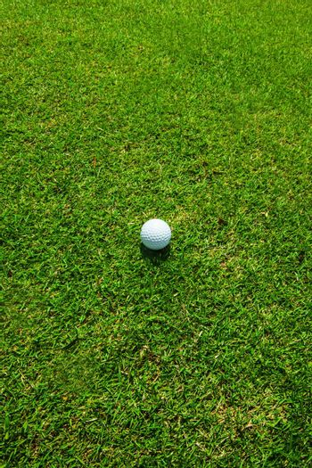 Golf ball on green grass, top view golf course with copy space