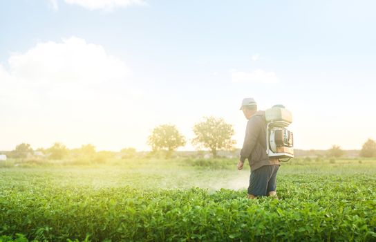 A farmer with a mist sprayer spray treats the potato plantation from pests and fungus infection. Protection and care. Use chemicals in agriculture. Agriculture and agribusiness. Harvest processing.