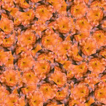 texture of a seamless flower pattern, decorative design elements