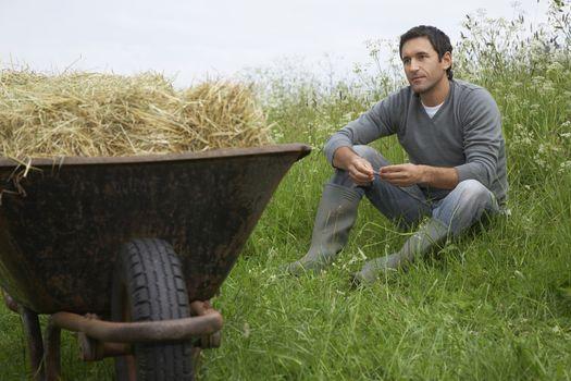 Man sitting beside wheelbarrow with hay in field
