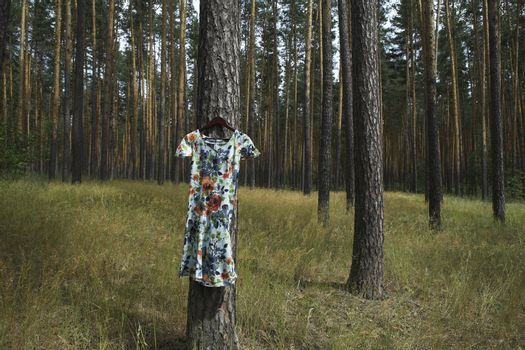 Dress hanging on tree in forest
