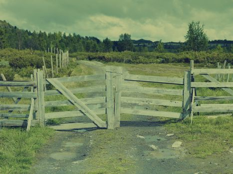 Country road with fence
