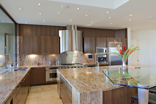 Contemporary kitchen counter in mansion