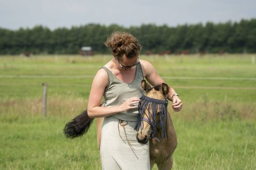 A falcon color foal in the field, wearing a fly mask, young woman takes off the fly mask.