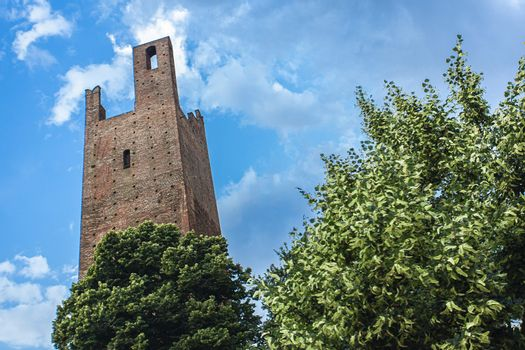 Rovigo's historical tower in Italy with trees and blue sky