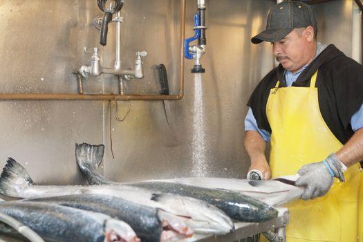 Mature fishmonger washing fish under tap water