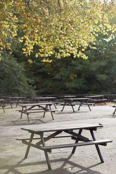 Picnic tables in park