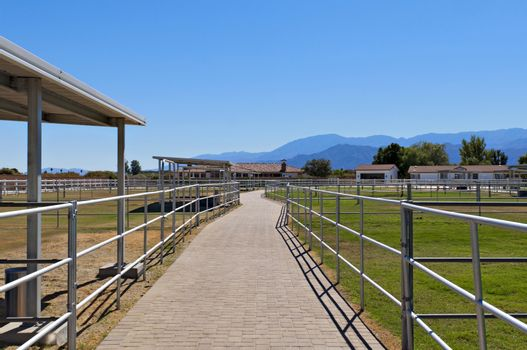 Path between paddocks on a ranch