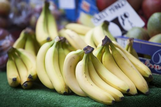 Close-up of bananas for sale