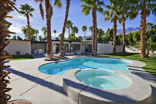 Residential pool with palm trees