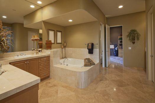 interior of large bathroom