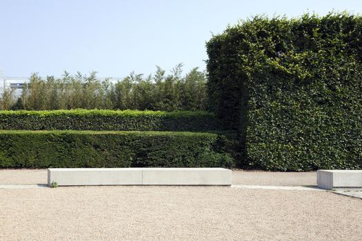 British Wall with Hedges