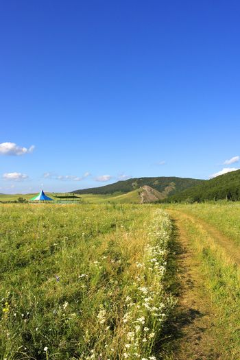 Beautiful summer landscape with  mountains field trees