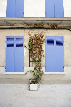 Picturesque outdoor shot of Parisian House