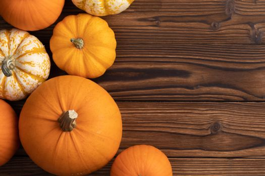 Autumn border of pumpkins on wood background with copy space
