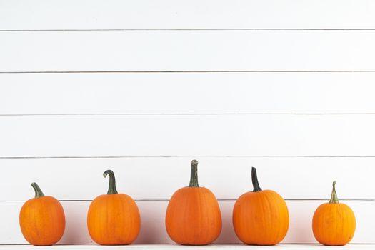 Five orange pumpkins on white wooden background, Halloween concept