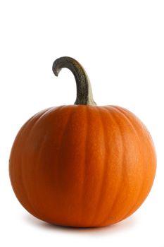 One big orange pumpkin isolated on white background