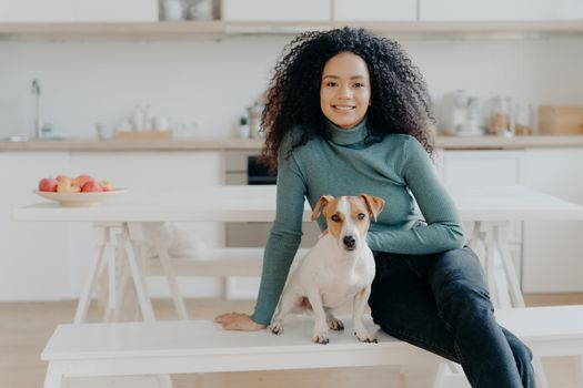 Happy housewife with Afro haircut, sits at bench with pedigree dog, have fun and look directly at camera, pose in kitchen, express good emotions, relax together. Lovely pet with owner at home