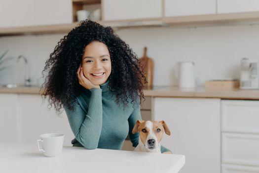 People, animals, friendship concept. Cheerful curly woman sits in kitchen , drinks hot bevereage, her loyal domestic pet poses near enjoy spending time together. Afro girl with dog in modern apartment