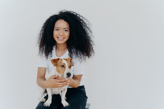 Humans and animals concept. Cheerful good looking woman with crisp hair, smiles pleasantly, plays with pedigree dog, sits on comfortable chair, makes memorable shot, pose against white background